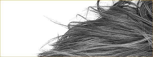 Tom Vink - Haare